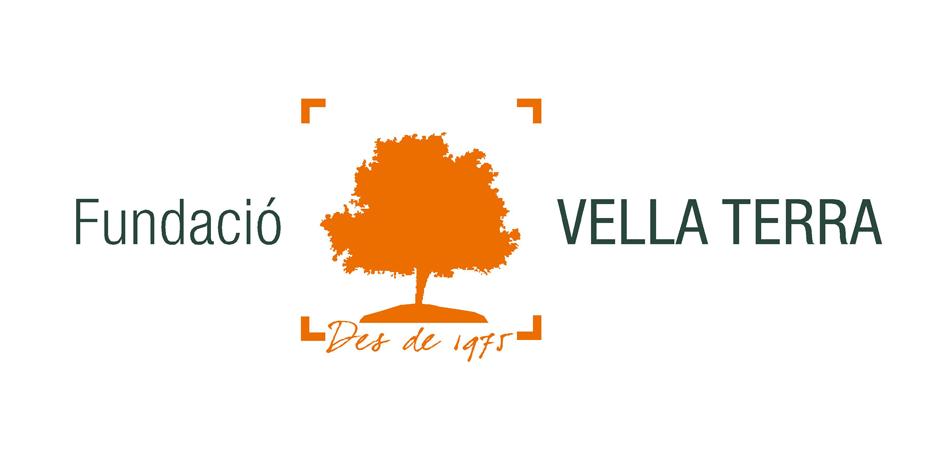 Fundació VT logo